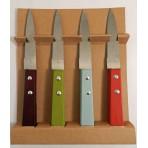 Coffret 4 couteaux d'office manches colorés Pradel Excellence