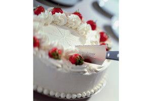 Couteau à gâteau Triangle lame dentée 18cm