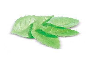 Décors en azyme 24 feuilles vertes Scrapcooking