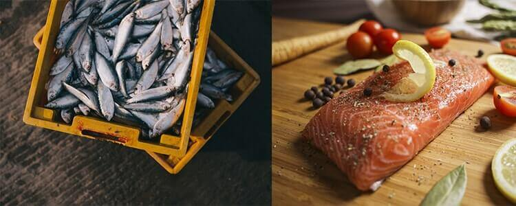 Les meilleurs couteaux à poisson sur Couteauxduchef !