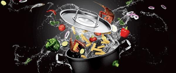 casserole fissler